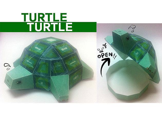 turtle-turtle -kit168.com