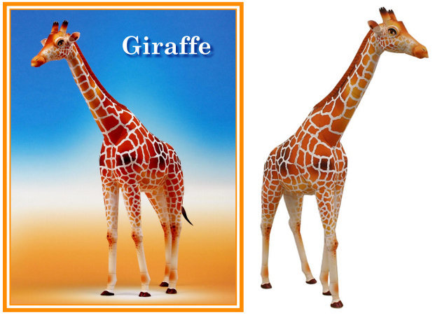 giraffe-huou-cao-co -kit168.com