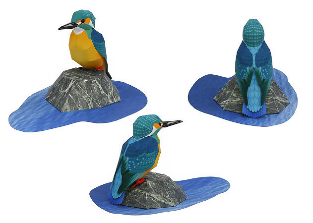 common-kingfisher-1 -kit168.com