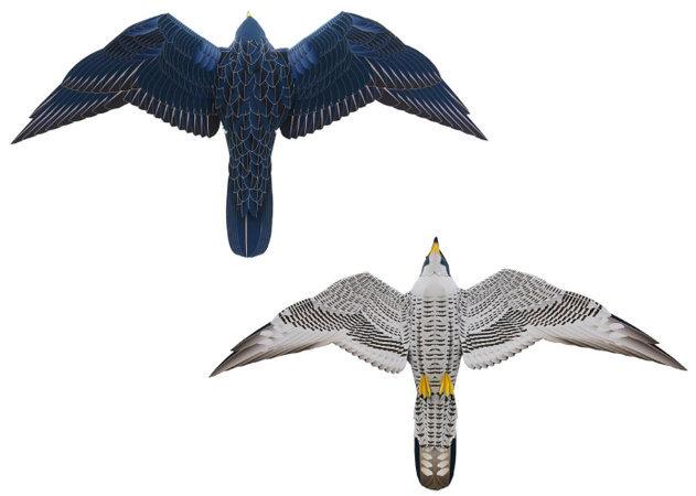 falcon-2 -kit168.com
