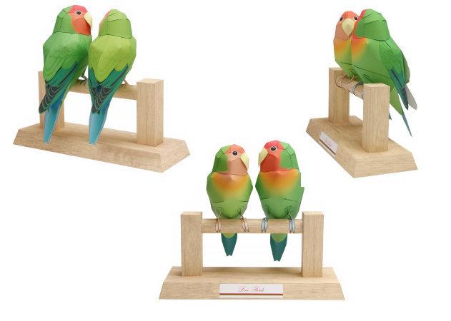 love-birds-1 -kit168.com