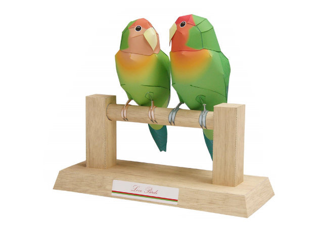 love-birds -kit168.com