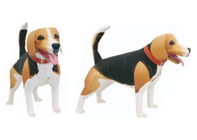 beagle-1 -kit168.com