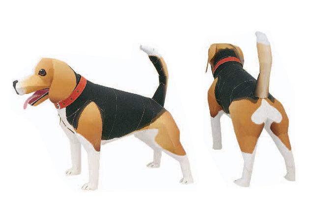 beagle-2 -kit168.com