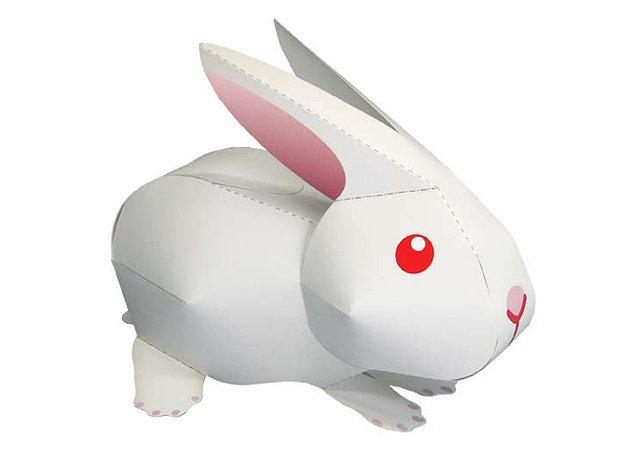 rabbit -kit168.com