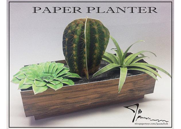 cactus-planter -kit168.com