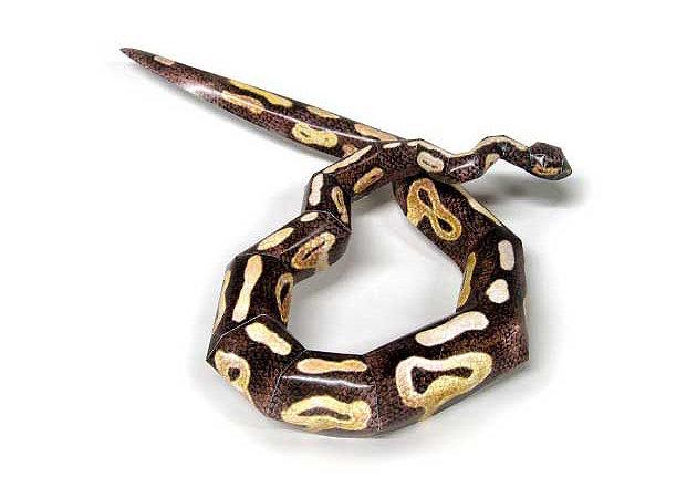 python-regius -kit168.com