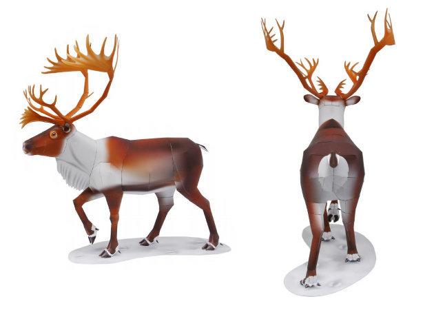 reindeer-1 -kit168.com