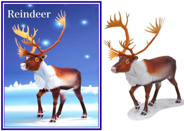 reindeer -kit168.com