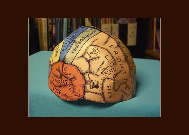 brain-hemisphere-hat -kit168.com