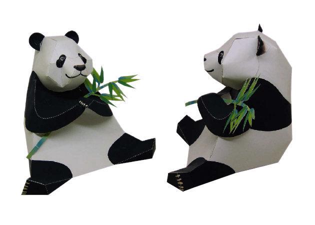 panda-1 -kit168.com