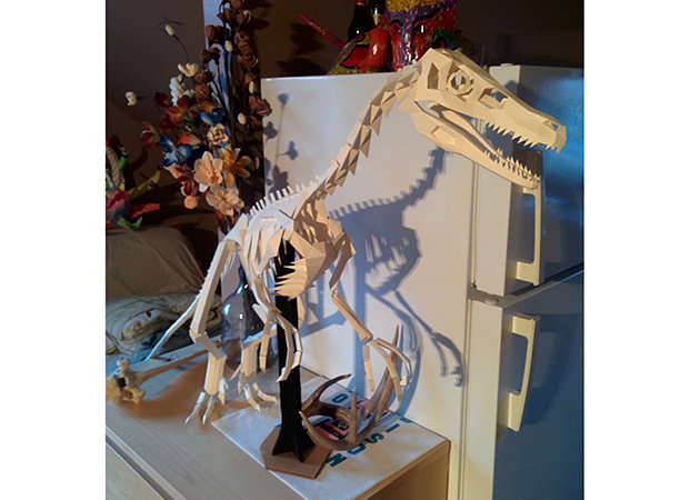 the-great-velociraptor-skeleton-1-1-1 -kit168.com