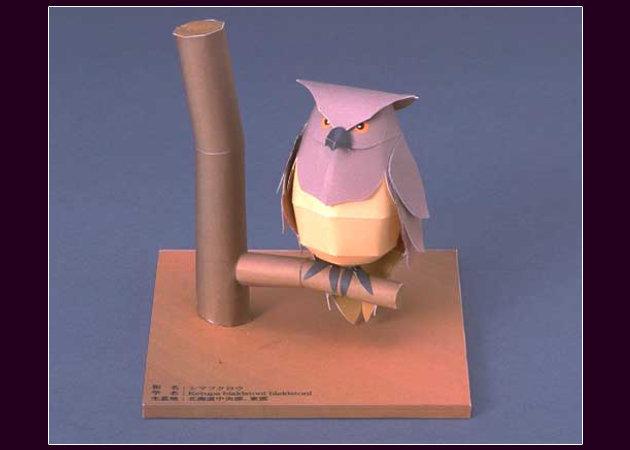 japanese-owl -kit168.com