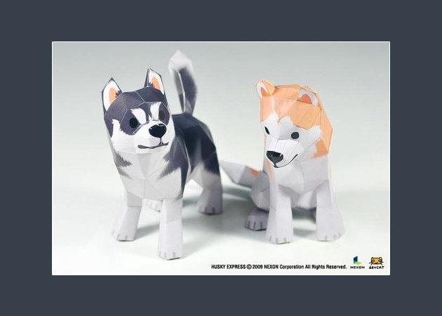 cho-husky-1-2 -kit168.com