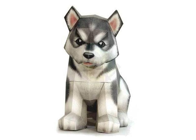 cho-husky-con -kit168.com