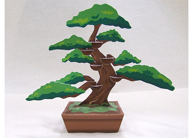 cay-bonsai -kit168.com