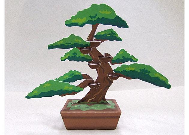 cay-bonsai -kit168.com
