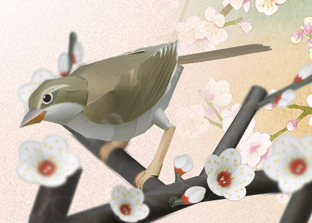 bush-warbler-in-a-branch-of-japanese-plums-diorama-kit168-com