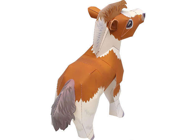 falabella-miniature-horse-2-kit168-com