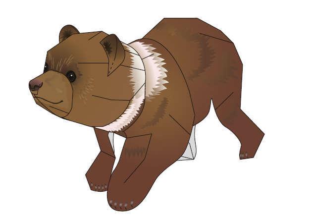 gau-xam-bac-my-grizzly-3-kit168-com
