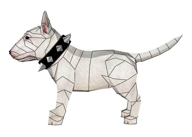 cho-bull-terrier-3