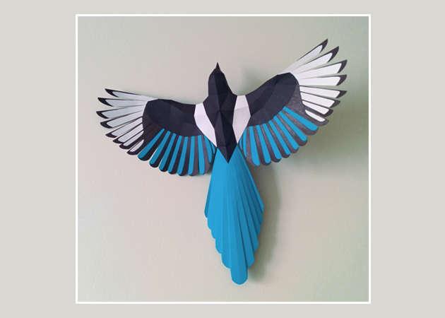 chim-magpie-kit168.com