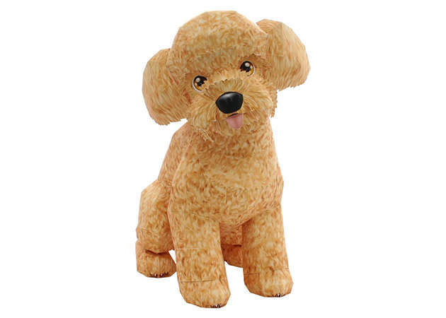 cho-toy-poodle-ver-2-1-kit168.com