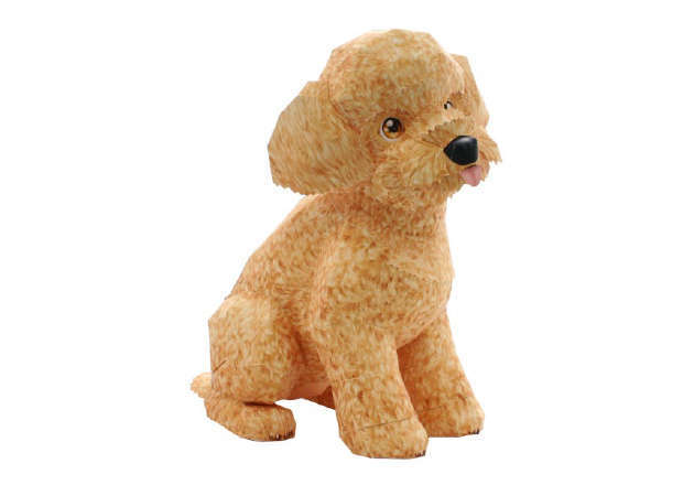 cho-toy-poodle-ver-2-3-kit168.com