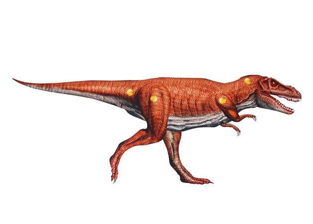 khung-long-tyrannosaurus-co-khop-noi-kit168.com