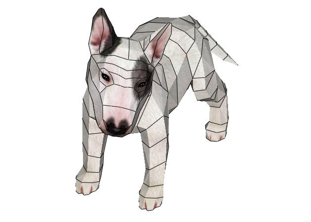 cho-bull-terrier-4-mau-1