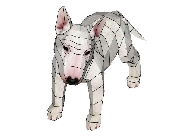 cho-bull-terrier-4-mau-3