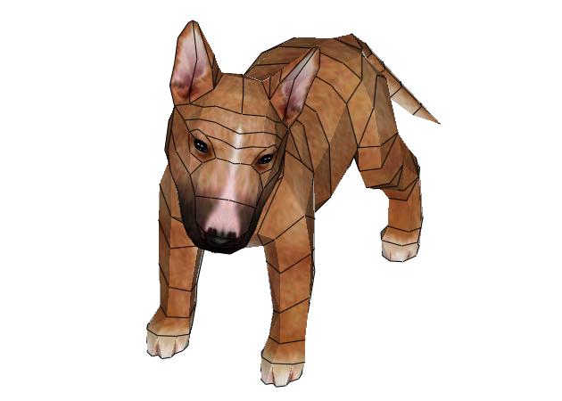 cho-bull-terrier-4-mau-4