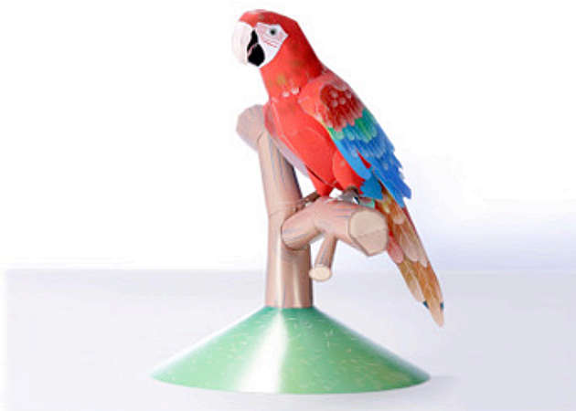 vet-red-parrot-kit168.com
