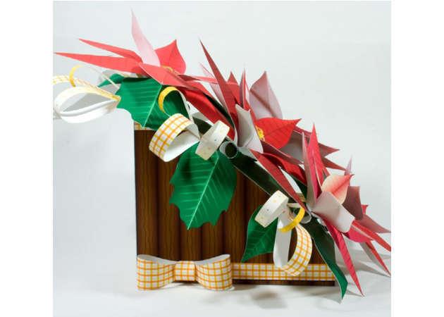 hoa-trang-nguyen-poinsettia-2-kit168.com