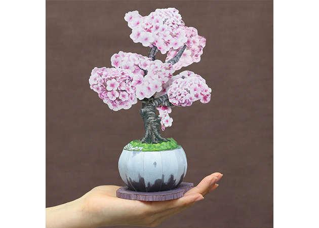 bonsai-anh-dao-2-kit168.com