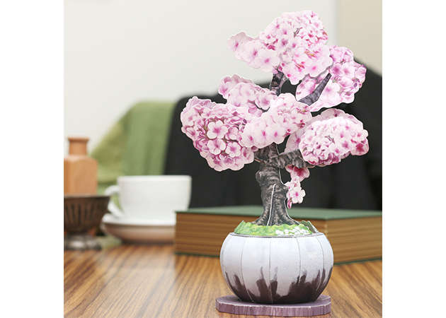 bonsai-anh-dao-kit168.com