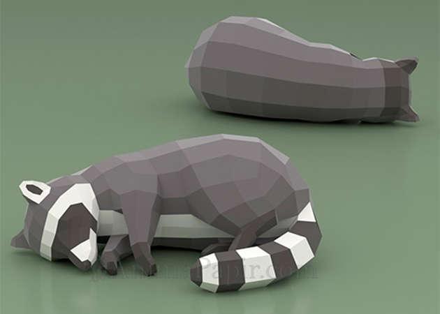sleeping-racoon-kit168.com